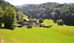 Berghotel Hinterduxerhof - Autriche