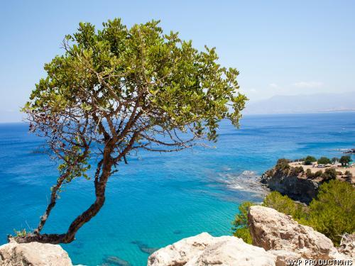 Autotour Trésors de Chypre. ***