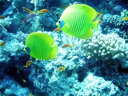 Photo Séjour Travel Evasion