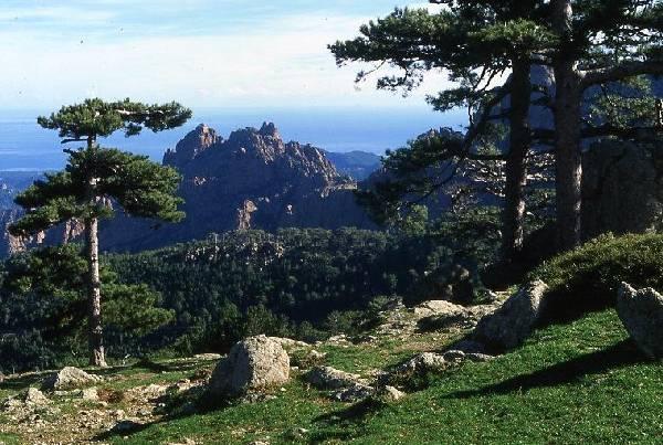 Le col de Bavella permet des panoramas exceptionnels entre montagne et mer.