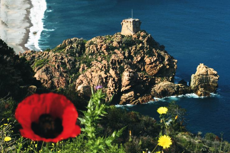 La tour de Porto règne sur la baie offrant un paysage superbe.