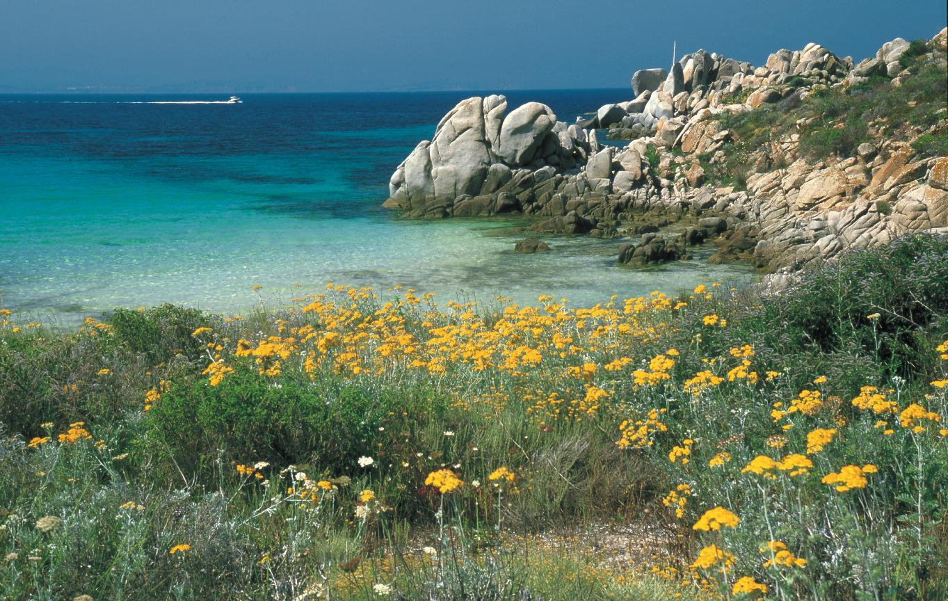 Photo Circuit Monaco Top Voyages