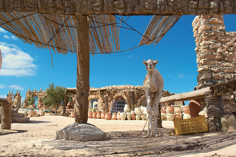 (Image) image Tunisie Djerba plage  fo