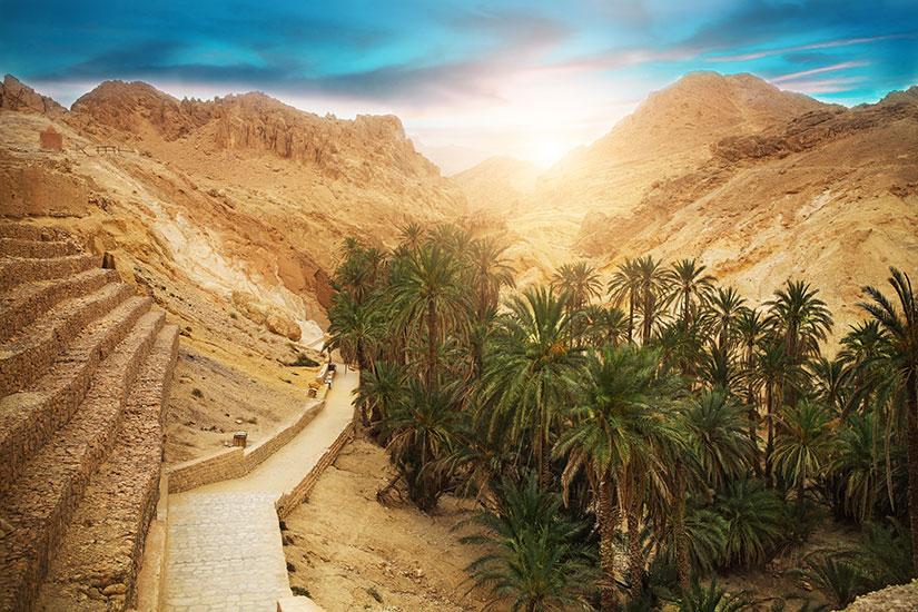 (Image) image Tunisie oasis chebika 01 as_83828313