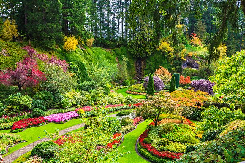 (Image) image Canada Victoria Sunken Garden  fo